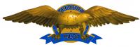 ad listing Pilot Wings thumbnail